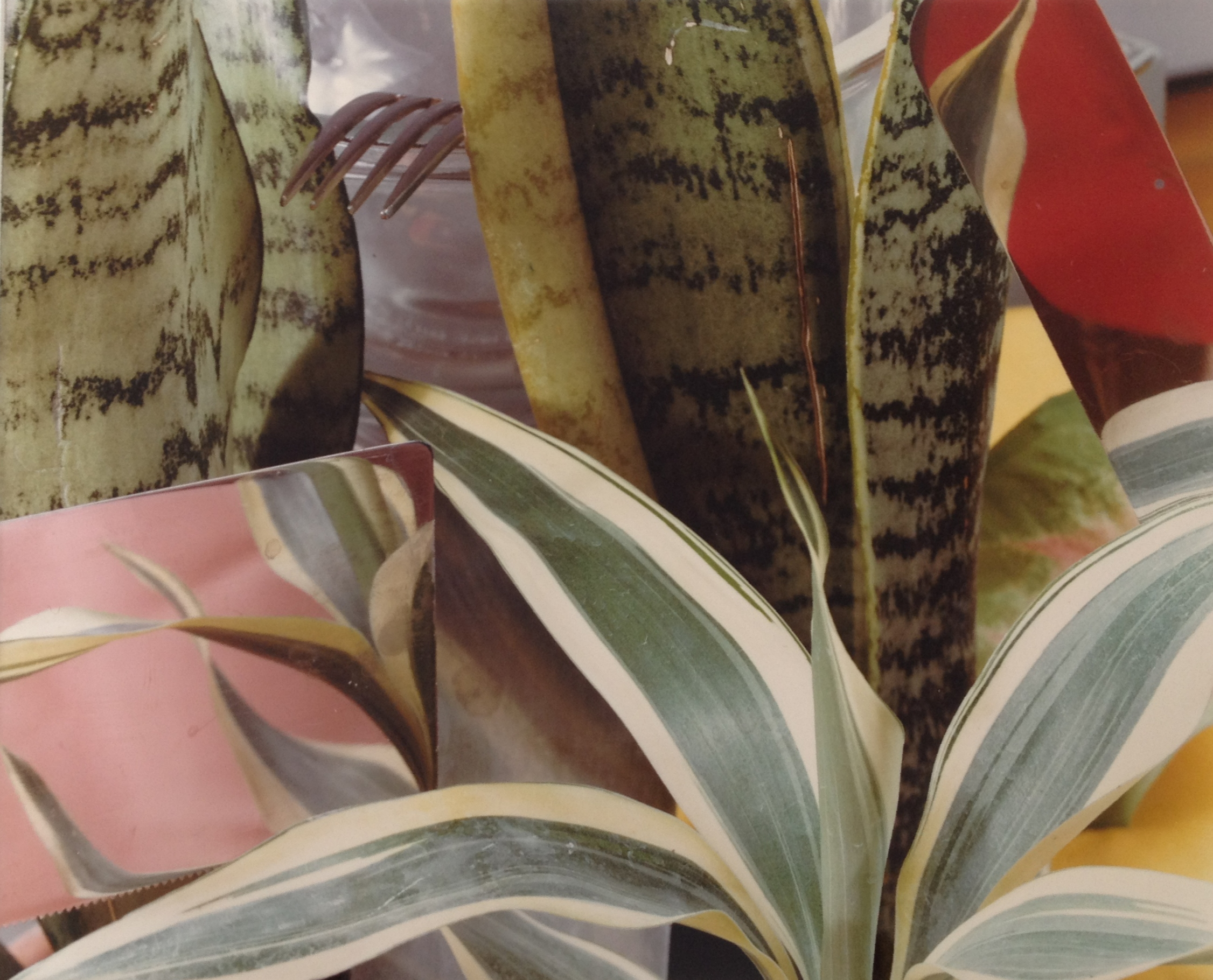 JAN GROOVER:  VINTAGE KITCHEN STILL LIFES    Through May 11
